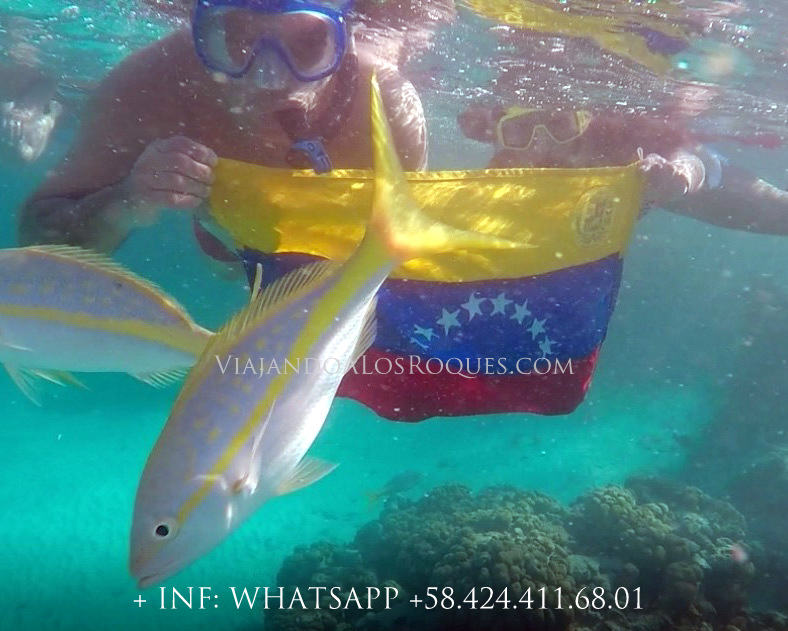 Snorkeling-piscina-natural-francisqui